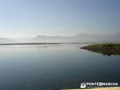 Marismas de Santoña (visita Ornitológica).; escapadas sierra madrid